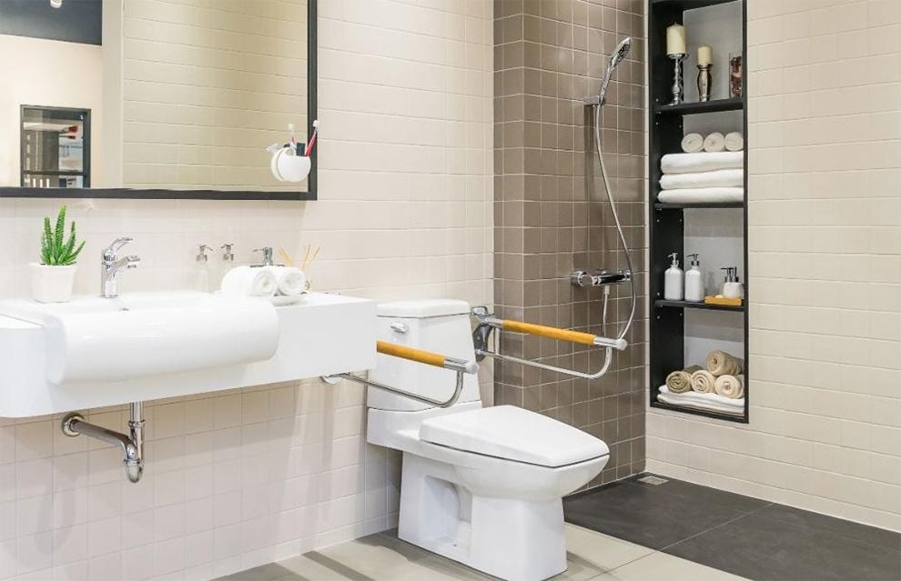 Best Handicap Toilets