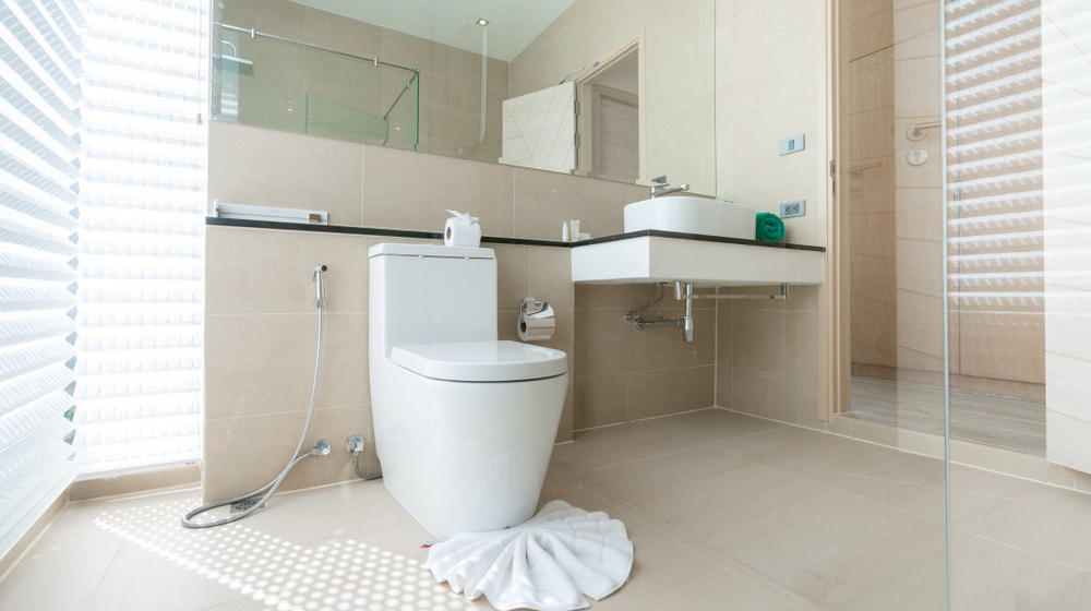 Best One Piece Toilets For The Money