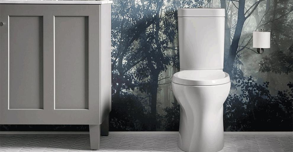 Kohler Persuade Curv Toilet