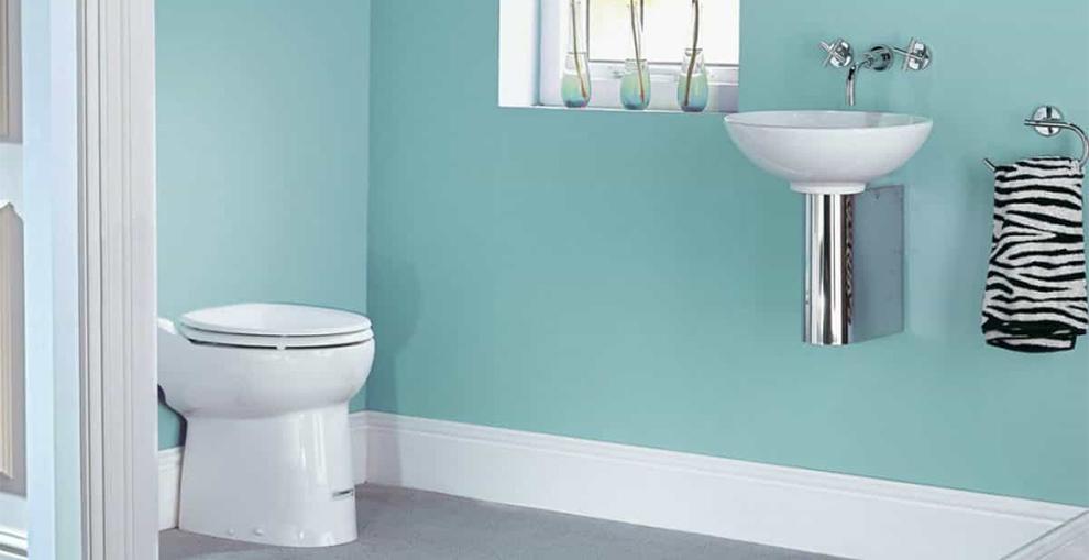 Best Saniflo Toilets
